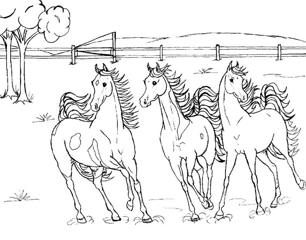 Coloring Pages Horses