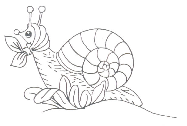 animated-coloring-pages-insect-image-0013