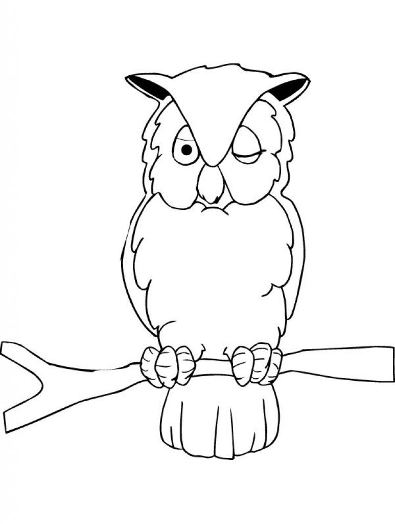 coloring pages owls animated images gifs pictures