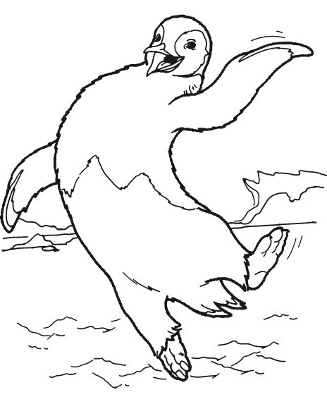 animated-coloring-pages-penguin-image-0020