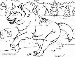 animated-coloring-pages-wolf-image-0003
