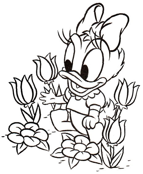 animated-coloring-pages-donald-duck-image-0007