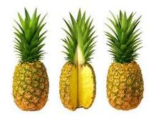 animated-pineapple-image-0014