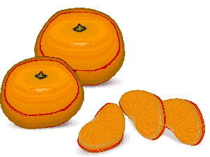 animated-orange-image-0021