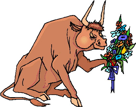 animated-bull-image-0049