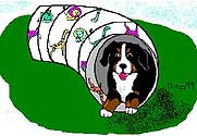 animated-bernese-mountain-dog-image-0250