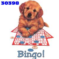 animated-bingo-image-0025